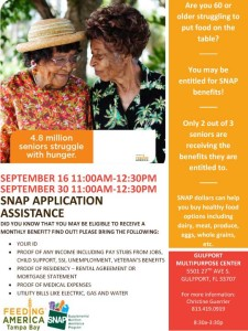 SNAP-application-assistance